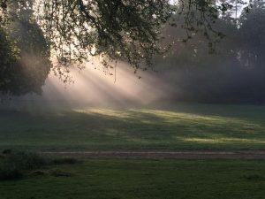Bonnevaux sunrays May2021