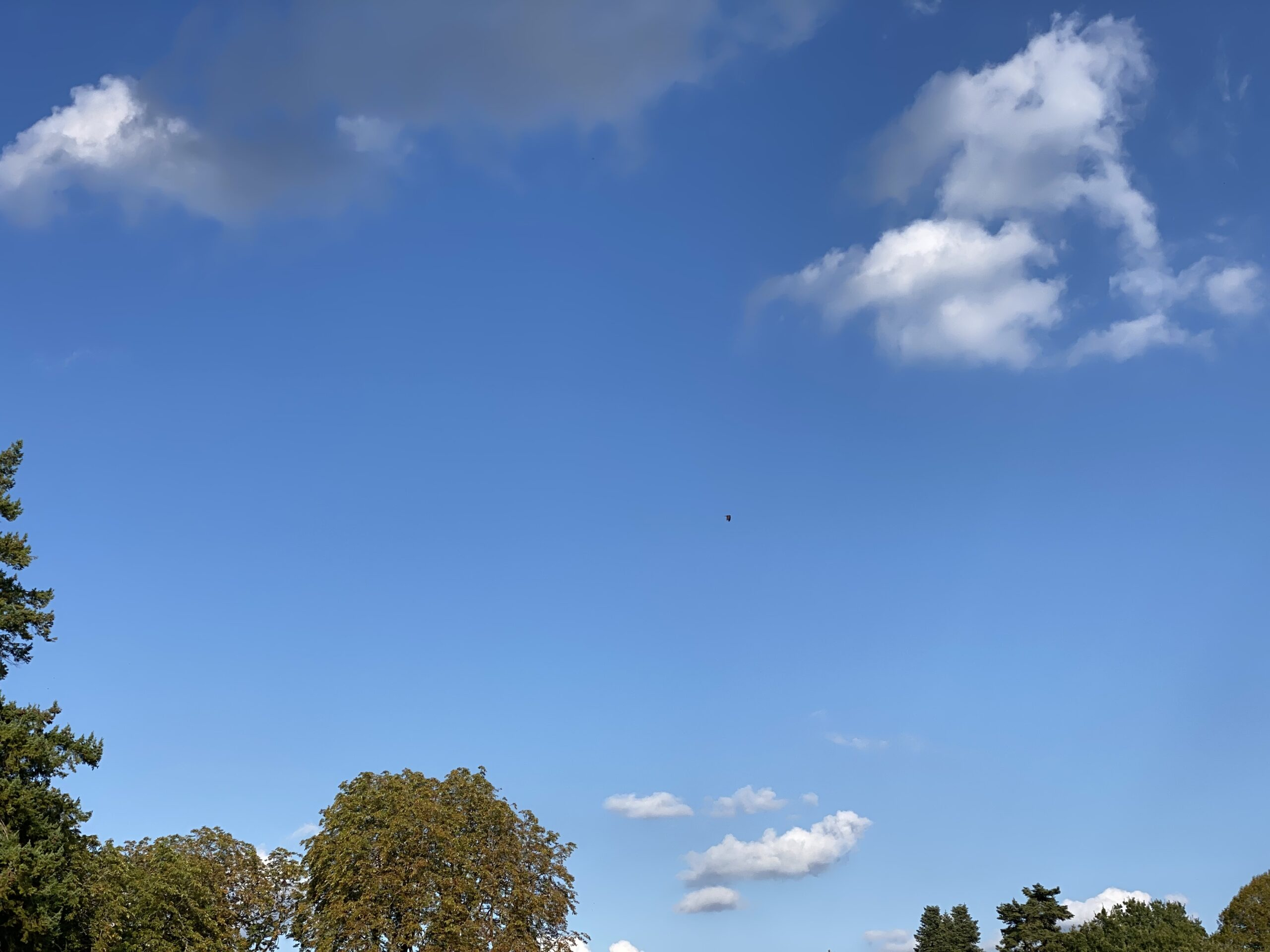 Sky at Bonnevaux